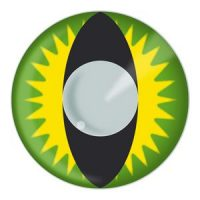 Green Dragon Halloween Contact Lenses