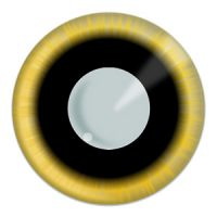 Eclipse Contacts Product Image